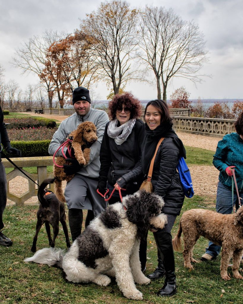 Suffolk County Parks Dog Friendly
