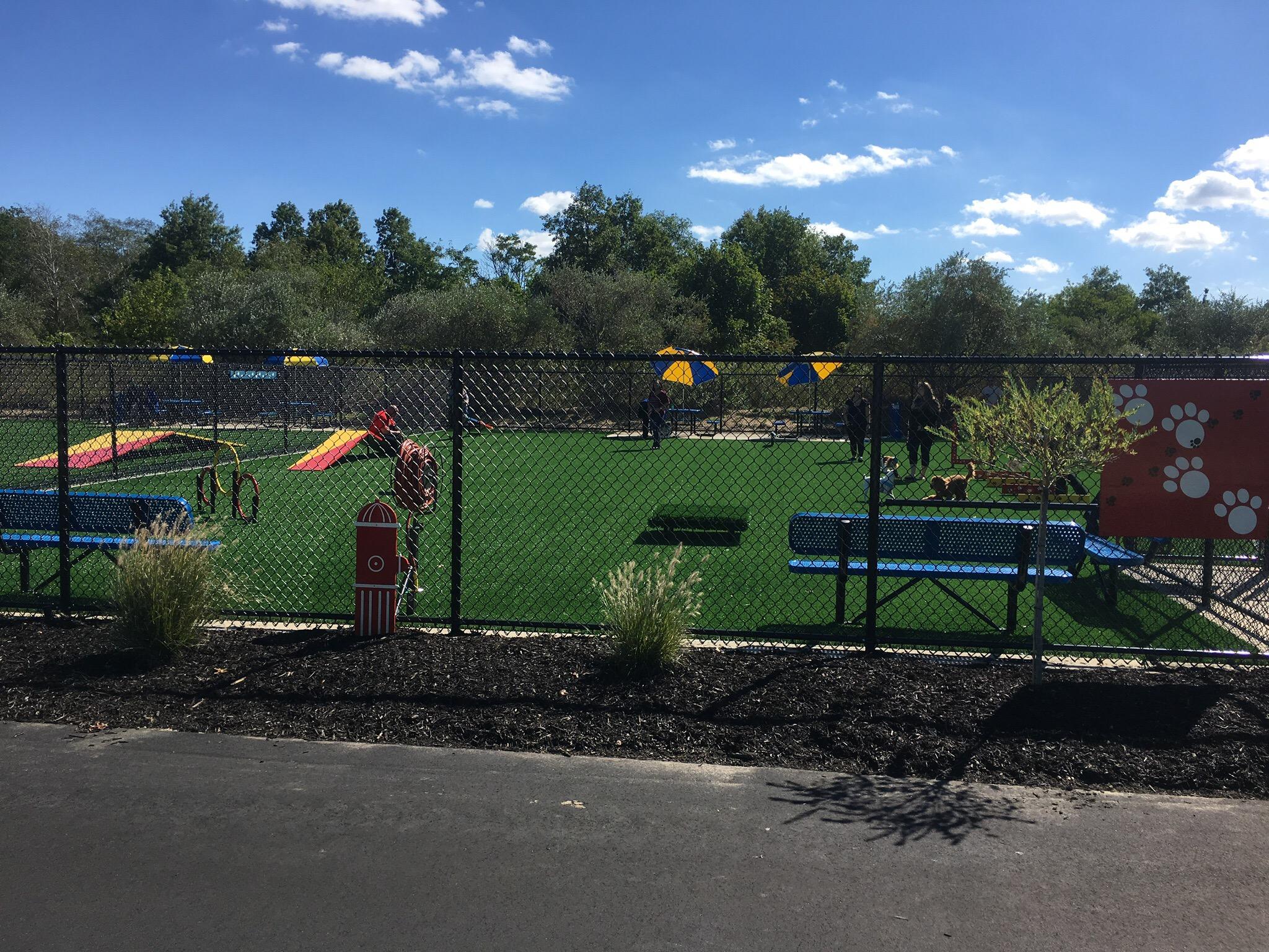 Newbridge Park Dog Park
