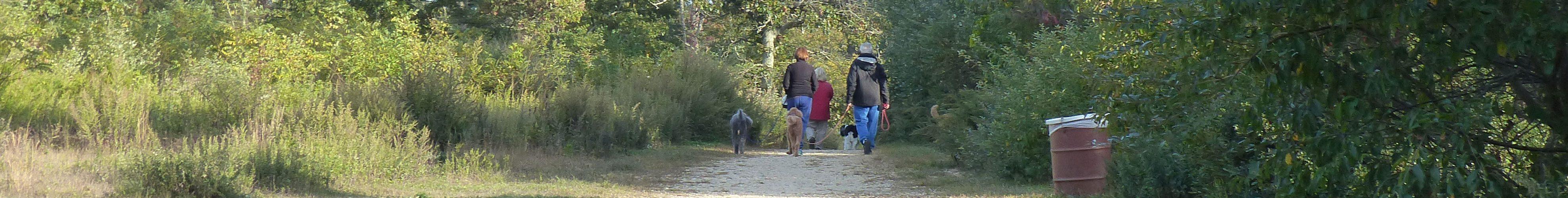 Springs Dog Park