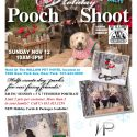 Flyer for Viewpoint Holiday Pooch Photo Shoot
